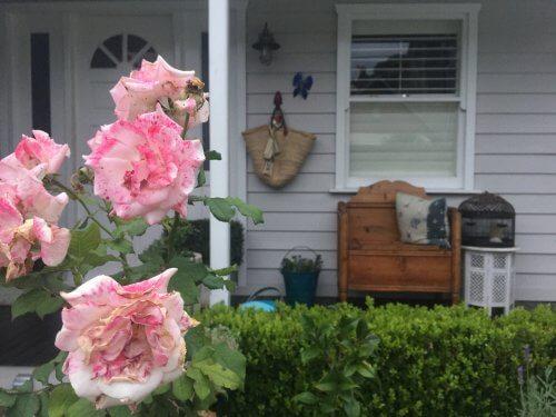 reasons to buy a bigger house